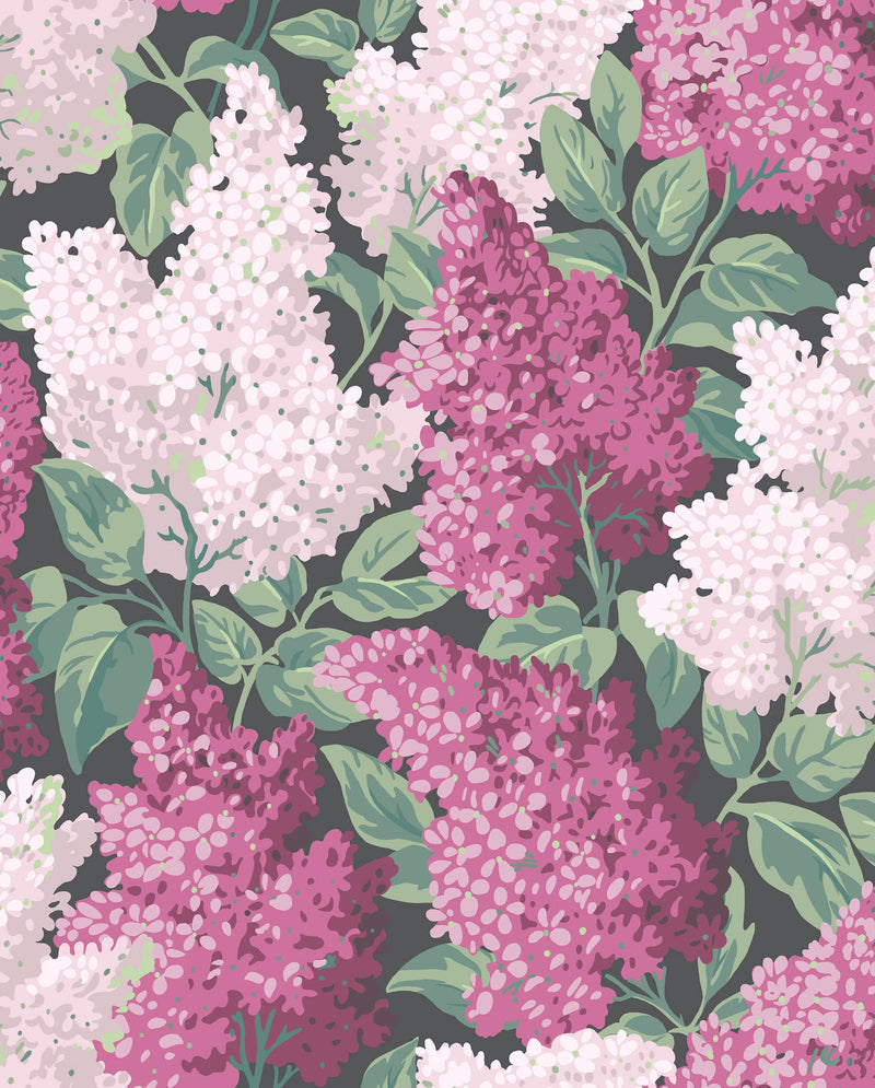 Cole & Son - Botanical - Lilac 115/1001 Magenta & Blush on Charcoal