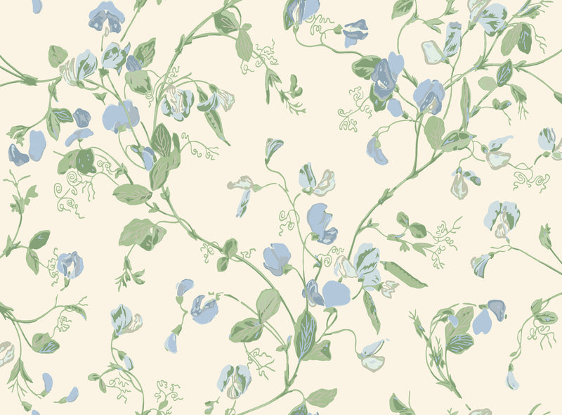 Cole & Son - Botanical - Sweet Pea 100/6031 Cerulean Sky & Sage on White