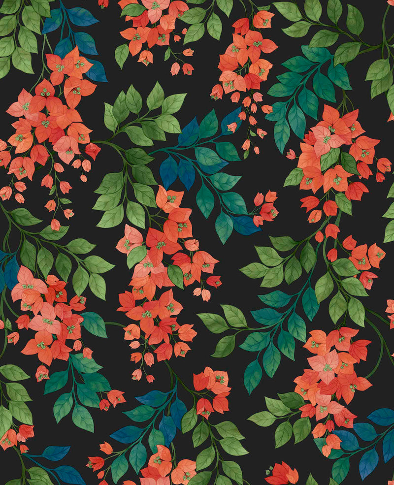 Cole & Son - Seville Collection - Bougainvillea 117/6017 Rouge, Leaf Green & Cerulean Sky on Charcoal