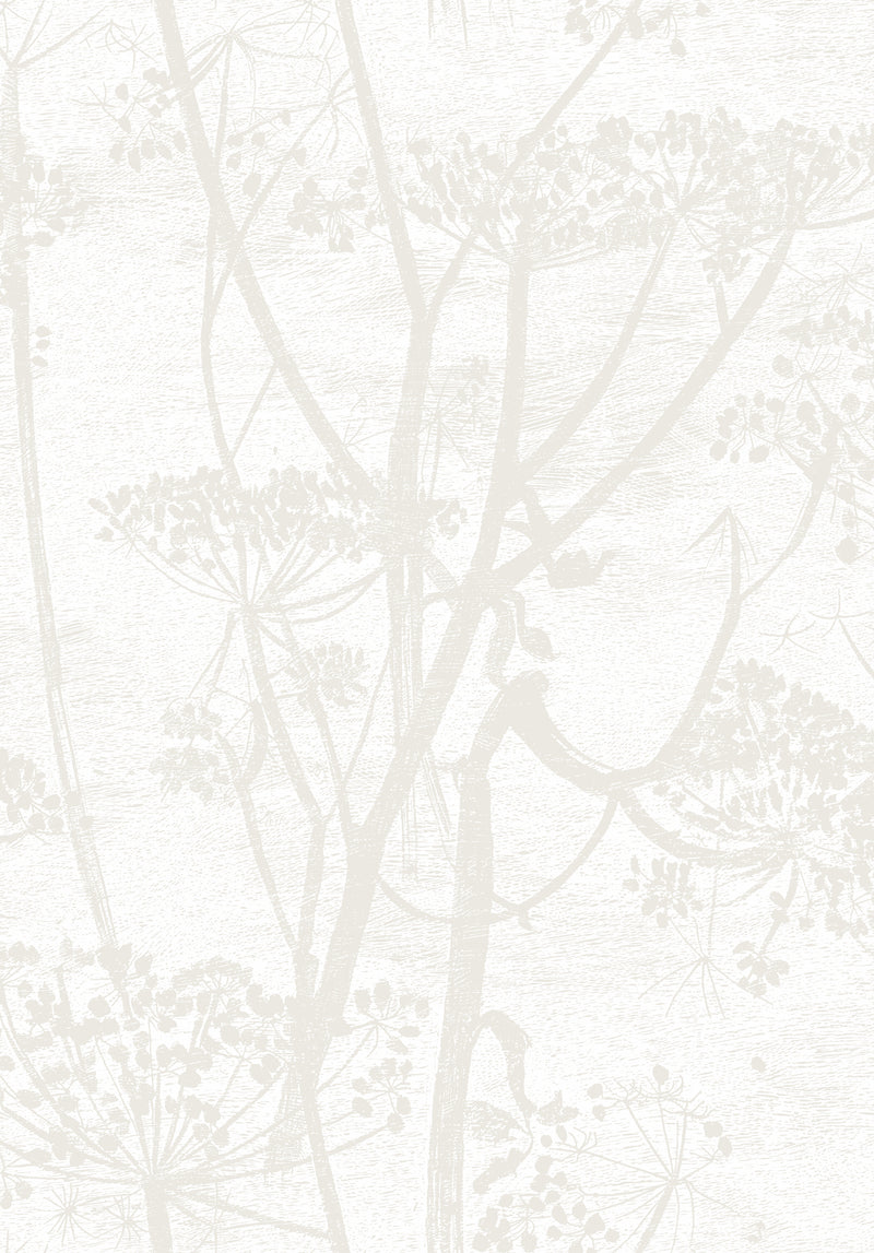 Cole & Son - The Contemporary Collection - Cow Parsley 95/9052 Chalk & Parchment