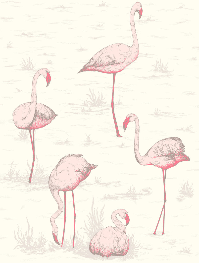 Cole & Son - The Contemporary Collection - Flamingos 95/8045 Blush & Cerise on White