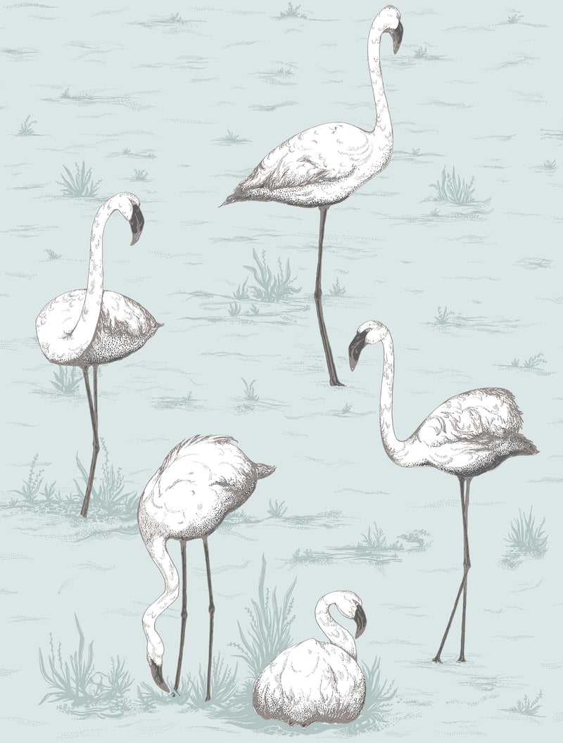 Cole & Son - The Contemporary Collection - Flamingos 95/8047 White & Charcoal on Powder Blue
