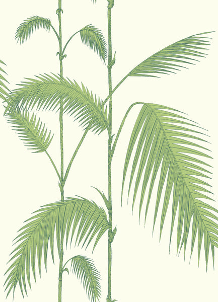 Cole & Son - The Contemporary Collection - Palm Leaves 95/1009 Olive Green on White