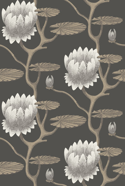 Cole & Son - The Contemporary Collection - Summer Lily 95/4026	White & Gilver on Charcoal