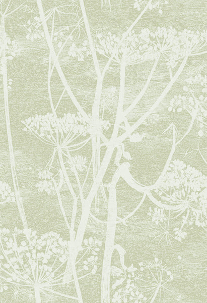Cole & Son - Icons - Cow Parsley 112/8029 Olive