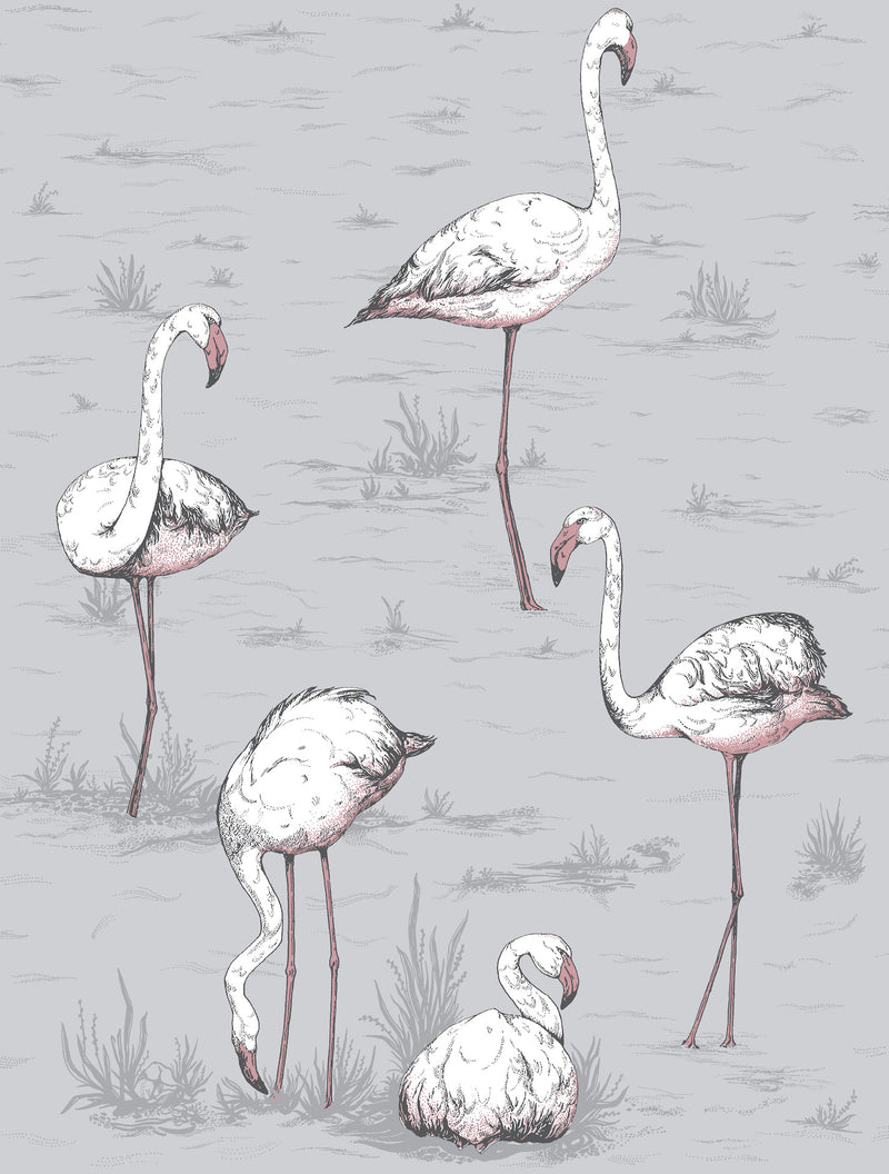 Cole & Son - Icons - Flamingos 112/11040 Lilac Grey