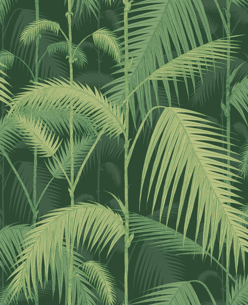 Cole & Son - Icons - Palm Jungle 112/1003	Forest Green