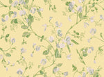 Sweet Pea 100/6029 yellow