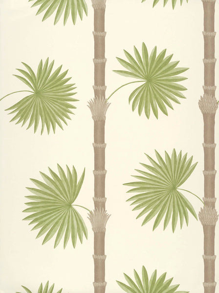 Paint & Paper Library - Botany - HARDY PALM SAND III