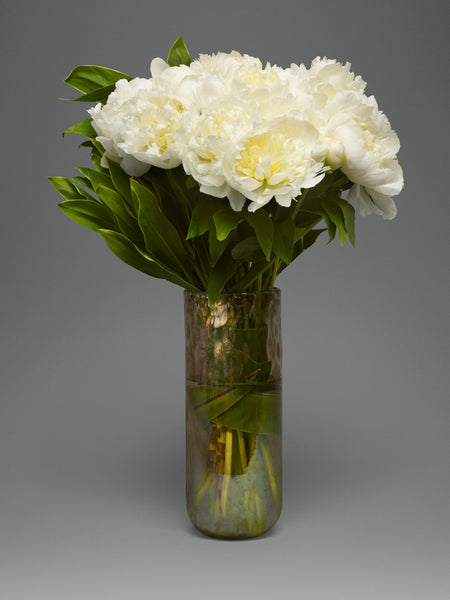 Pure White Peonies