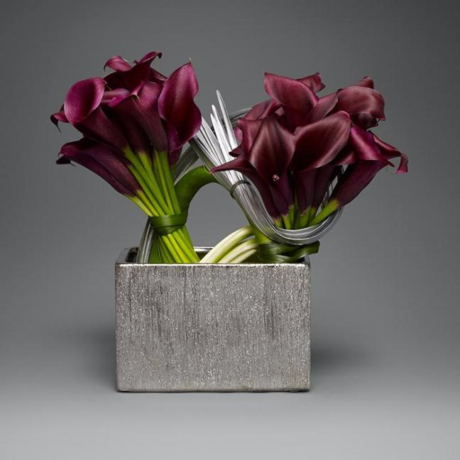 Burgundy Calla Lilies with Silver Accent