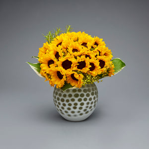 Speckle Sunflower