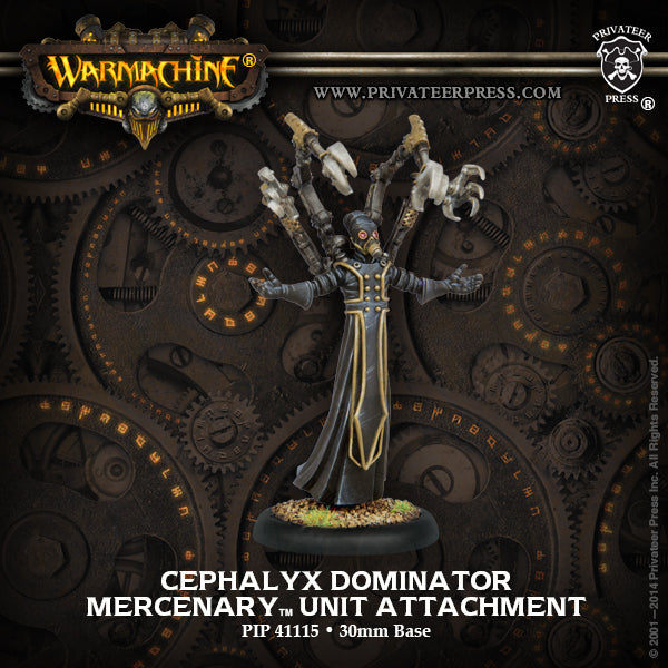 Mercenaries: Privateer Sea Dog Rifleman Weapon Attachment