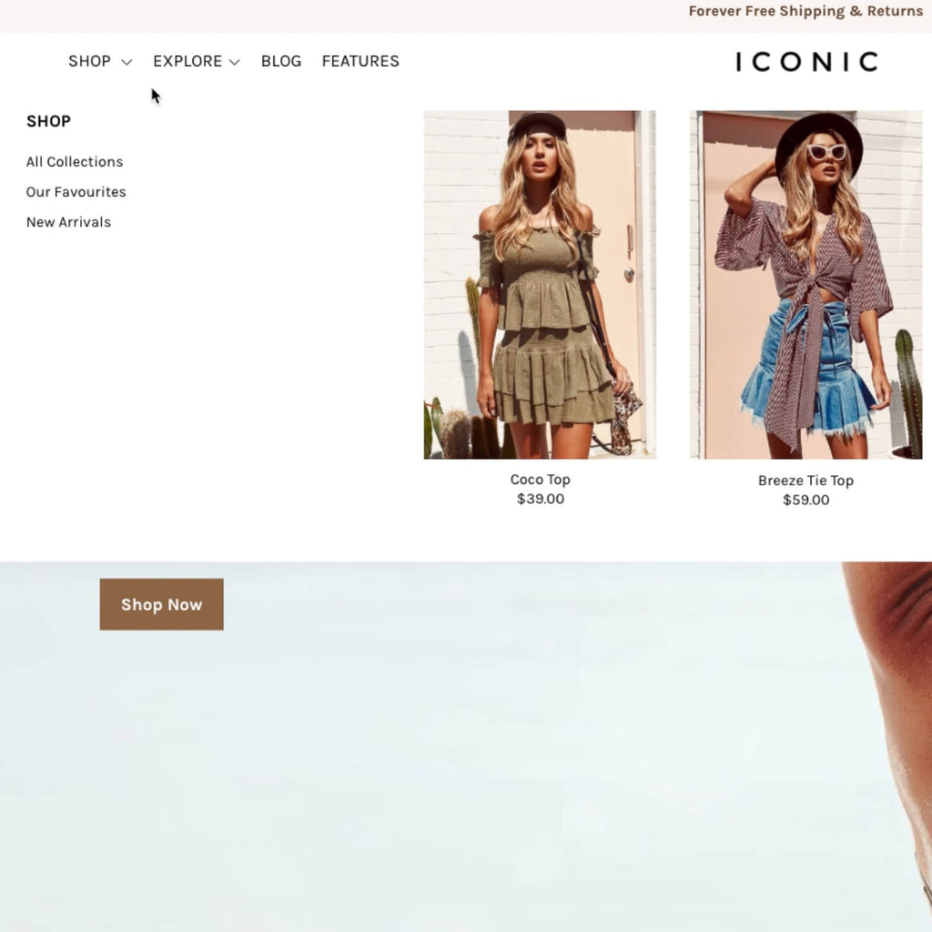 Add a mega navigation menu with image & content options Shopify theme