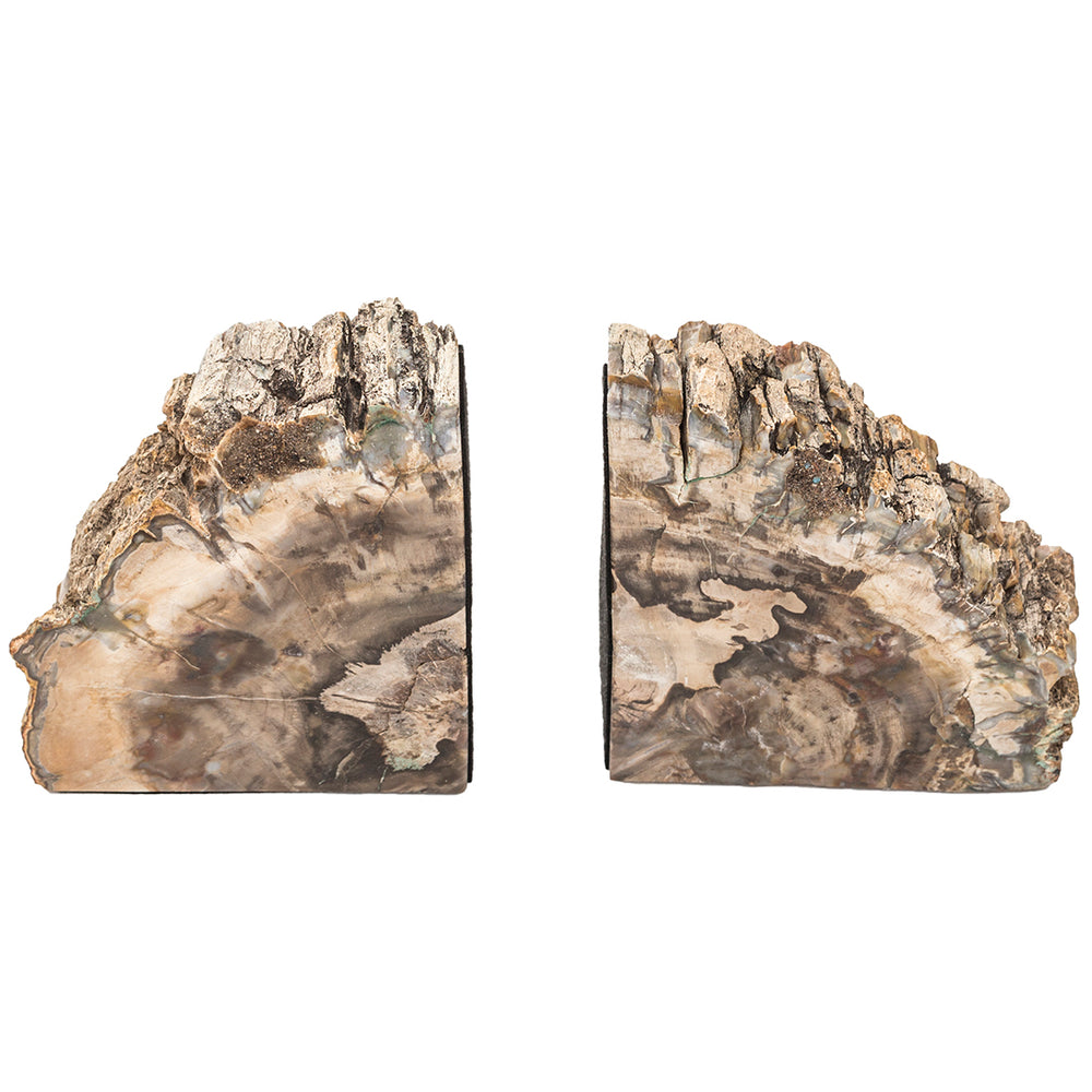 Petrified Wood Bookends - Accessories