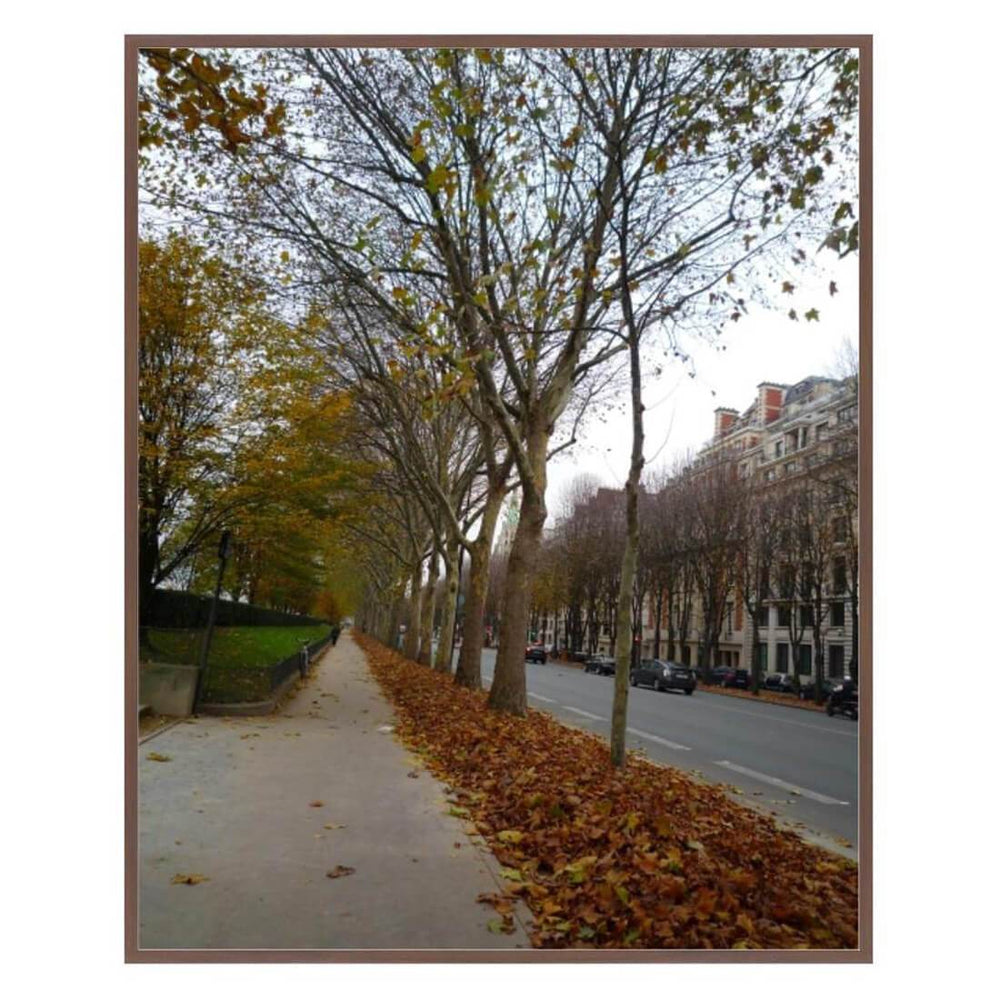 Parisian Stroll Framed - Accessories - Canvas Art - Nature