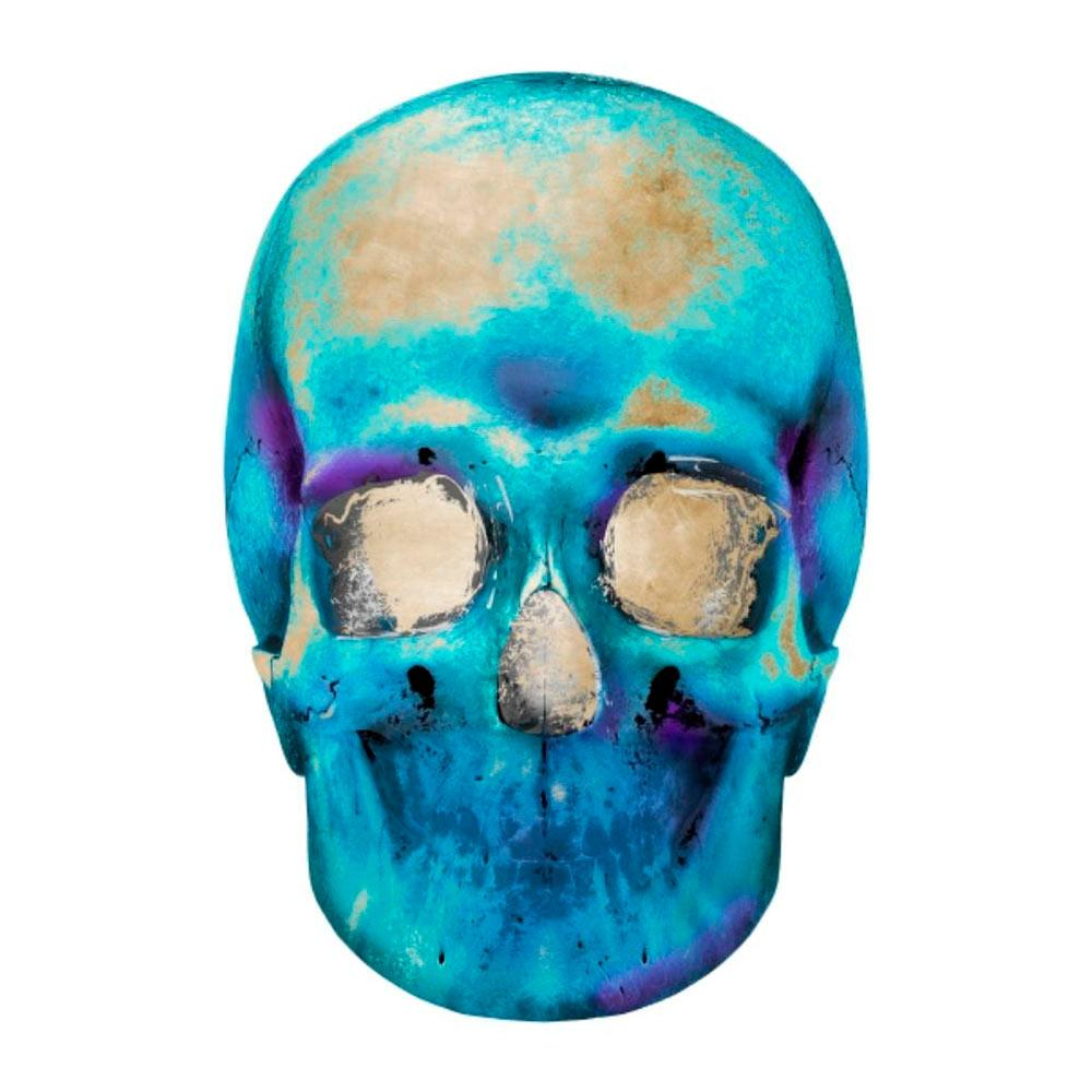 Radioactive Skull IV - Accessories Artwork - High Fashion Home