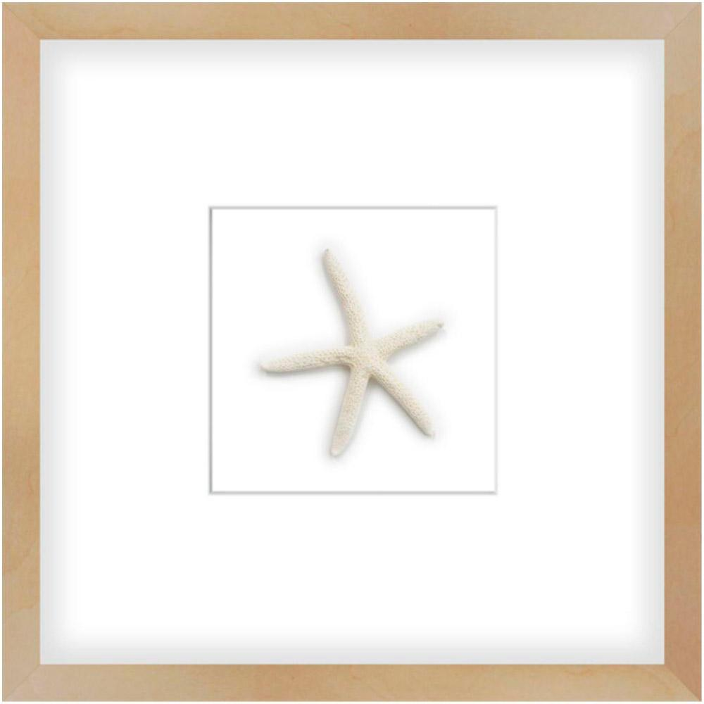 Starfish - Accessories - Canvas Art - Object