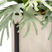 Tall Planter with Staghorn Fern - Accessories - High Fashion Home