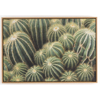 Cactus Cluster Framed - Accessories Artwork - High Fashion Home