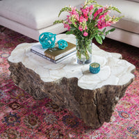 Chloe Fossilized Clam Lava Coffee Table - Modern Furniture - Coffee Tables - High Fashion Home