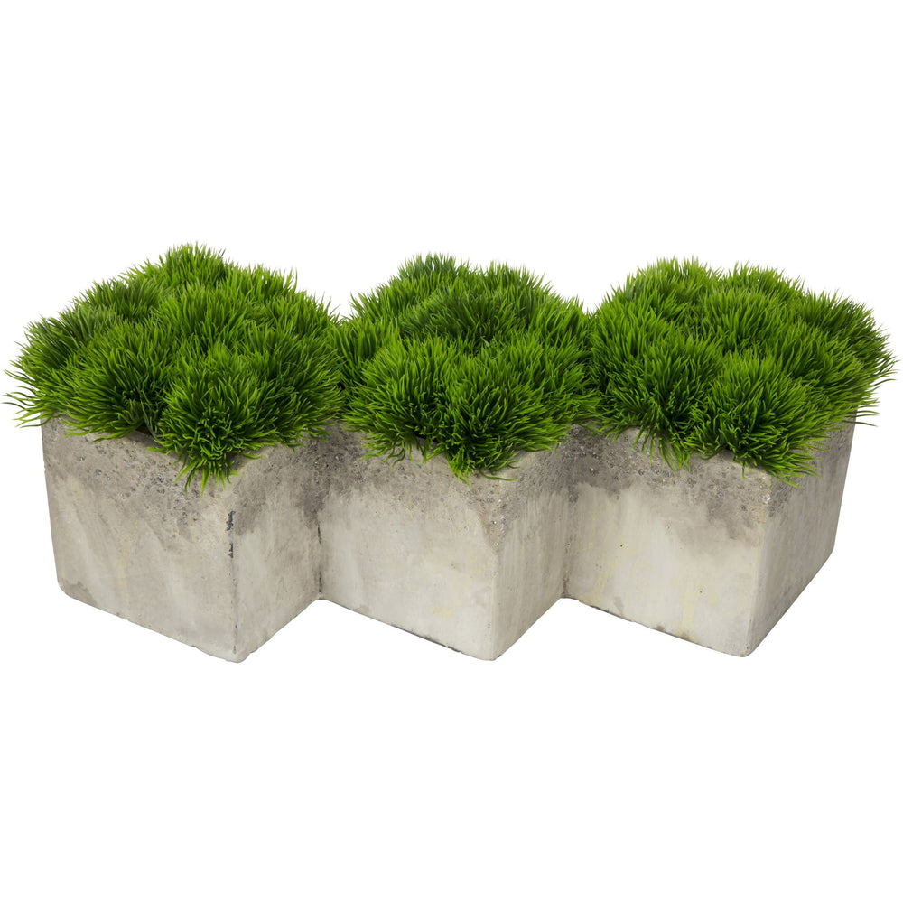 Greenery in Cement - Accessories - Plants