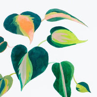 Monstera Sprout Pink by Jess Engle - Accessories Artwork - High Fashion Home