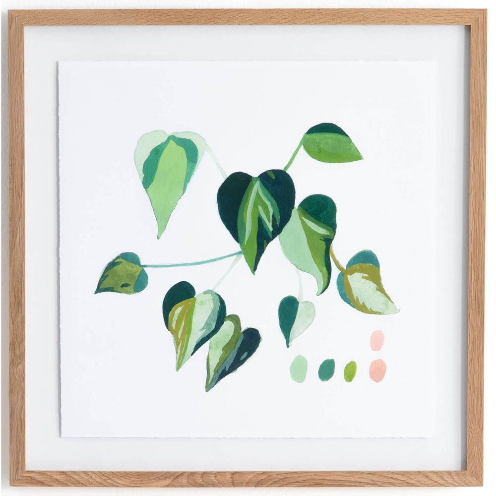 Monstera Sprout Sage by Jess Engle