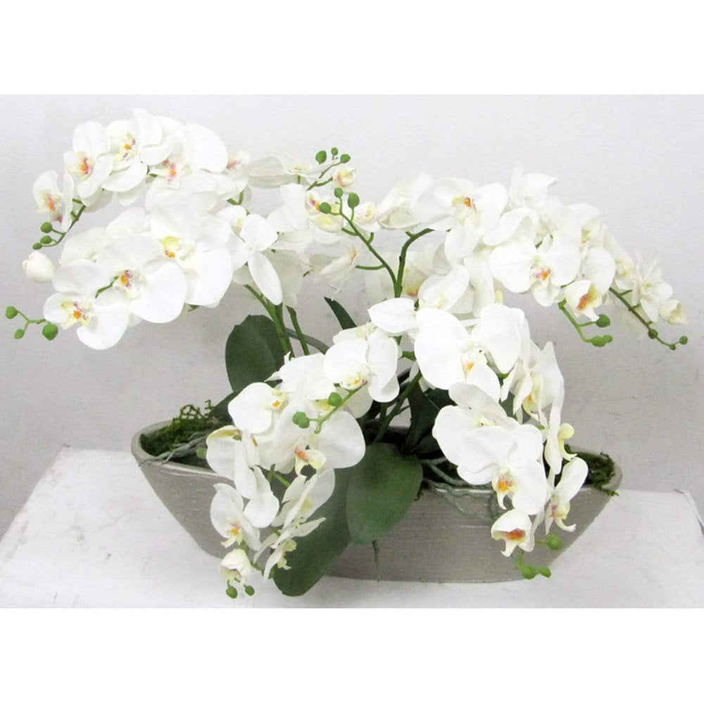 Orchid in Boat Vase - Accessories - High Fashion Home