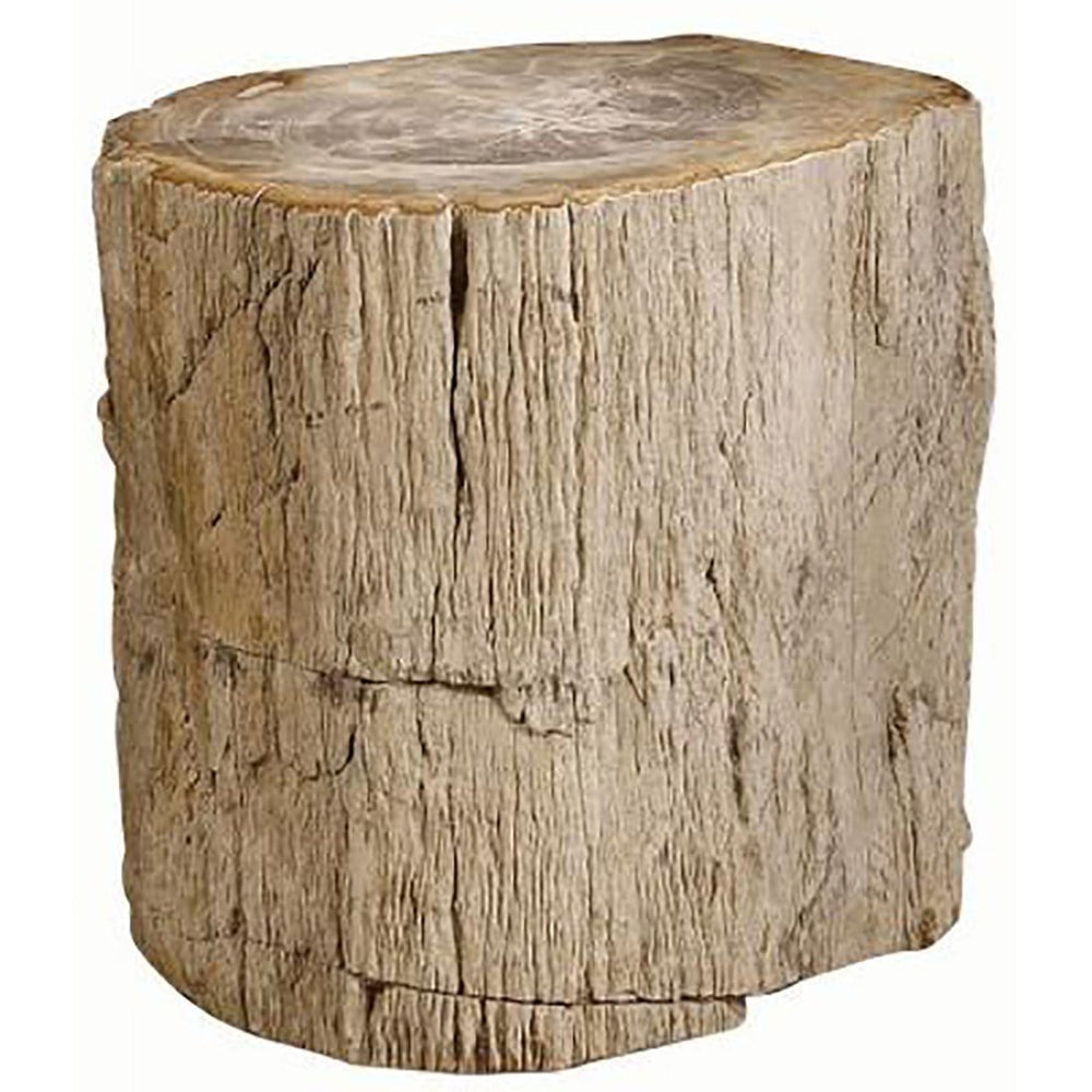 Petrified Wood Side Table - Furniture - Accent Tables - High Fashion Home
