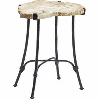 Sliced Petrified Wood Table - Furniture - Accent Tables - High Fashion Home