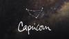 10 Quick Facts about Capricorns (Are you one?!)