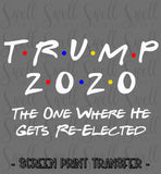 "TRUMP 2020 The One Where He Gets Re-Elected | Ready to Press Screen Print Transfer 11"" X 7"" - Swell Vinyl"