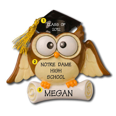 Personalized Christmas Ornament-Graduate Owl Ornament