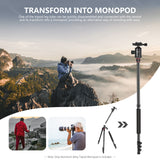 Neewer 77-Inch 2-in-1 Aluminum Tripod Monopod with 360 Degree Ball Head, 2 Center Axis, QR Plate and 8 Kilograms Load