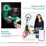 Neewer 10/12-inch RGB Ring Light Selfie Light Ring with Tripod Stand & Phone Holder, Infrared Remote Control