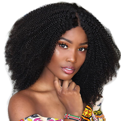 Afro Kinky Curly Lace Front Human Hair Wig