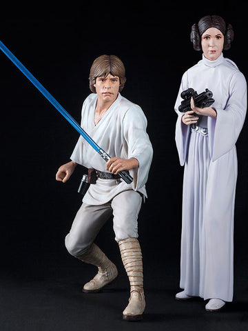 Star Wars - Luke Skywalker & Princess Leia
