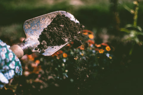 trowel with soil on it falling off onto the ground