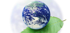 One Earth, Go Green with Video Conferencing
