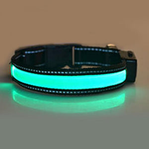 LED Dog Collar Flashing Light,  Night Safety Collar Solar Powered or USB Rechargeable - P & M Gear