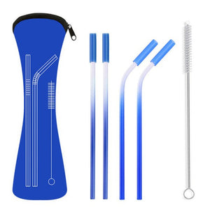 Stainless Steel Eco Friendly Reusable Straw Set with Brush & Bag - P & M Gear