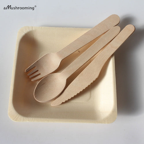 25 Sets Biodegradable Cutlery, Wooden  Plates Spoons Forks Knives - P & M Gear