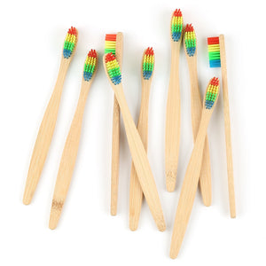 Eco Friendly Wood Rainbow Toothbrush, Soft Bristle, Bamboo - P & M Gear