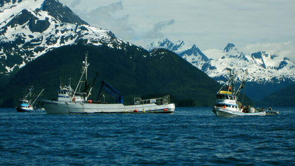 f/v Orion Prince William Sound