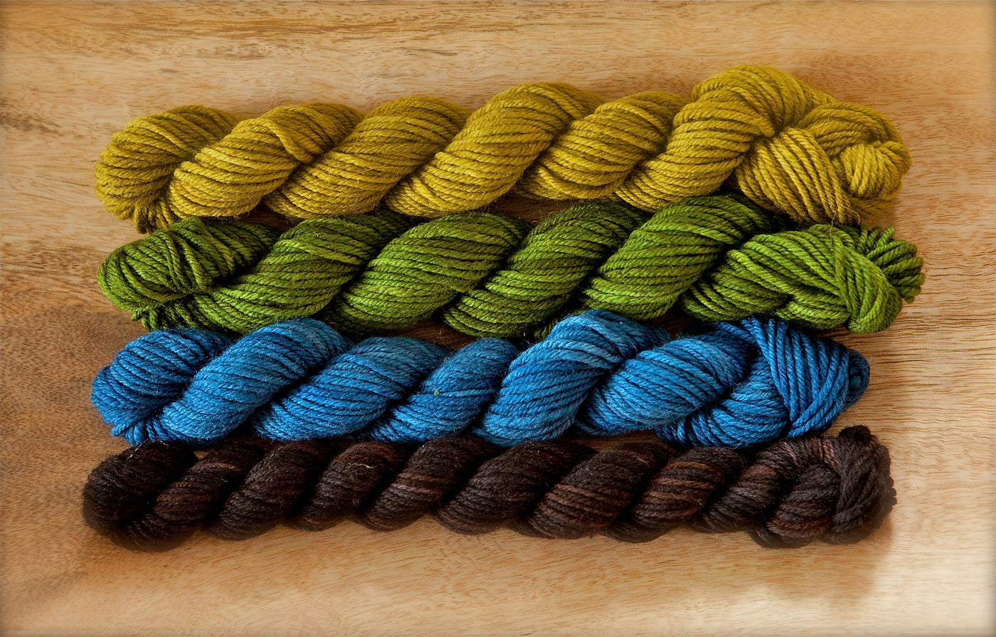 Springvale Supermerino Black Bear and Blueberries Quartet
