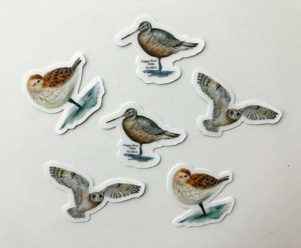 Mini Assorted Sticker Set - Birds