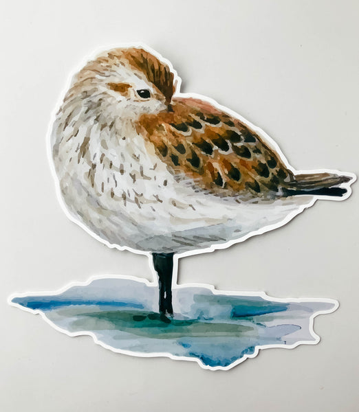 Sandpiper Window Cling