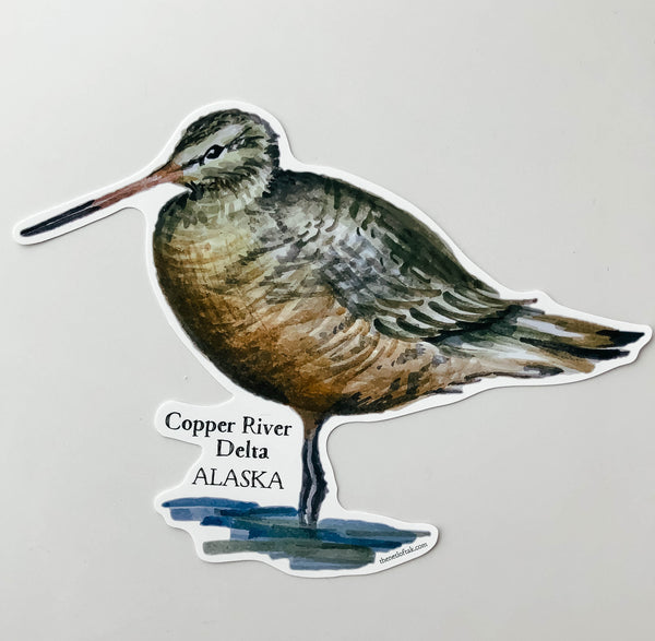 Godwit Window Cling