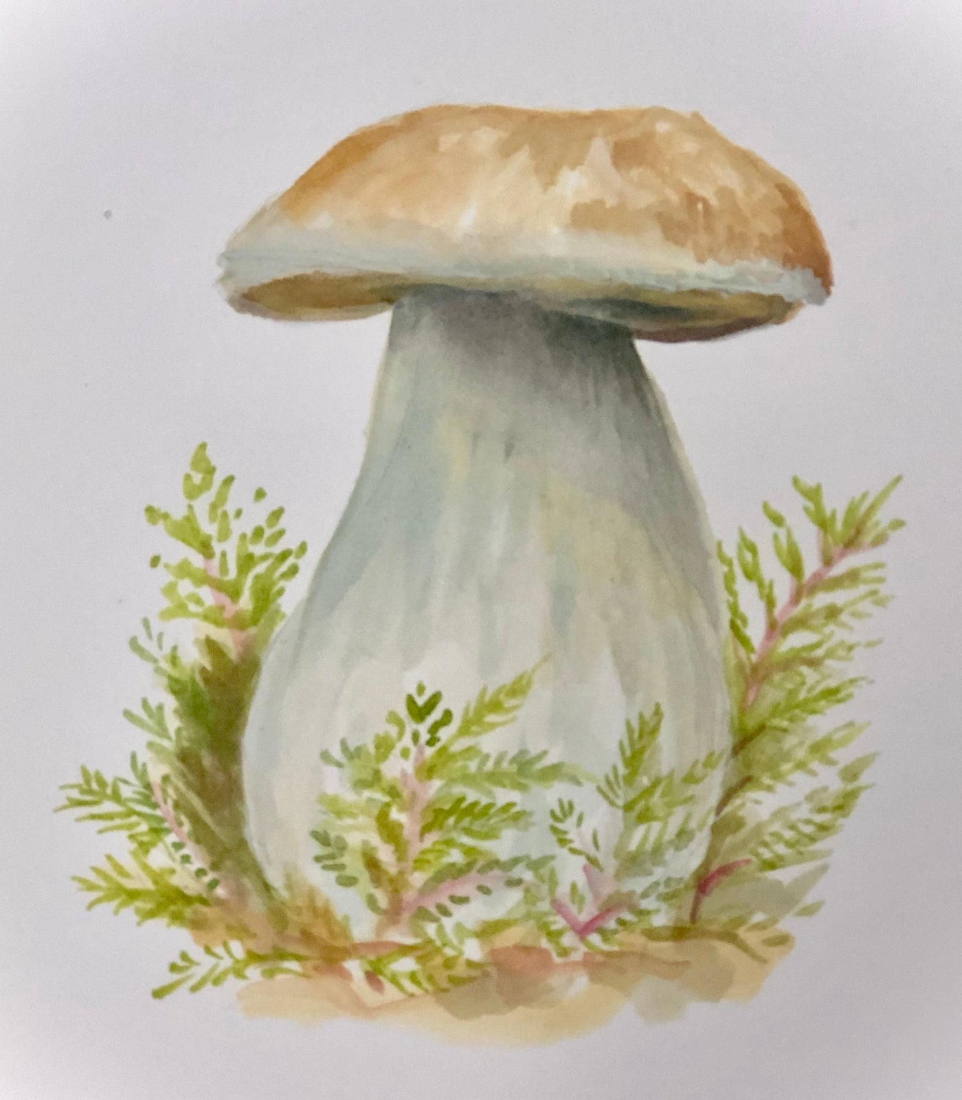Painting Mushrooms in Watercolor & Gouache